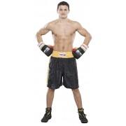 Трусы для бокса TOP TEN CLASSIC