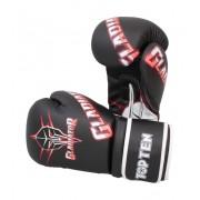 Перчатки для тренировок TOP TEN GLADIATOR